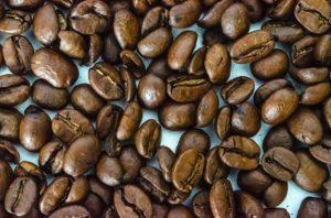 Softvér pre podnikateľský plán kaviareň